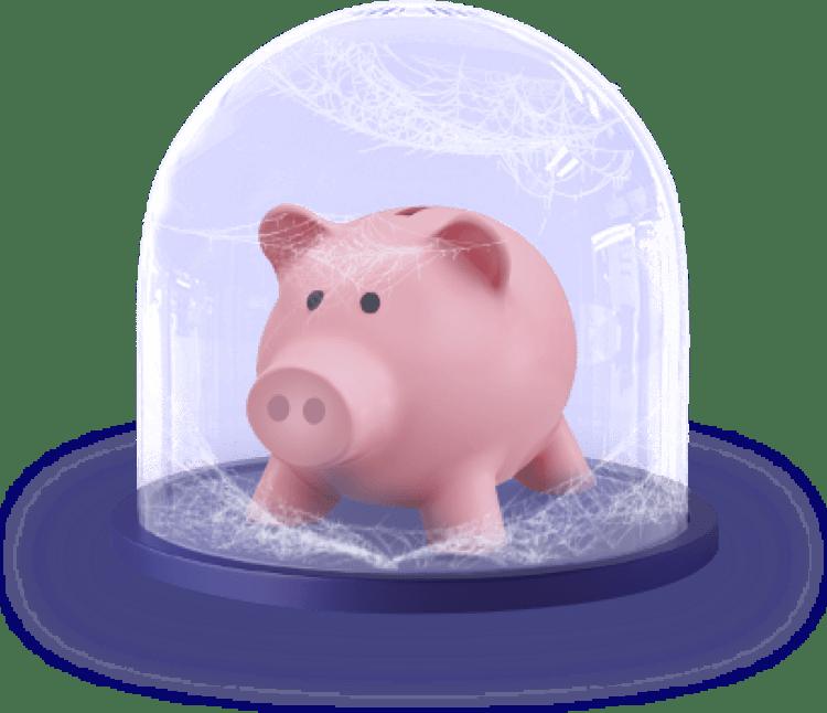 illustration pig
